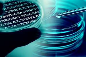 How much cancer risk is related mostly to random genetic mutations?
