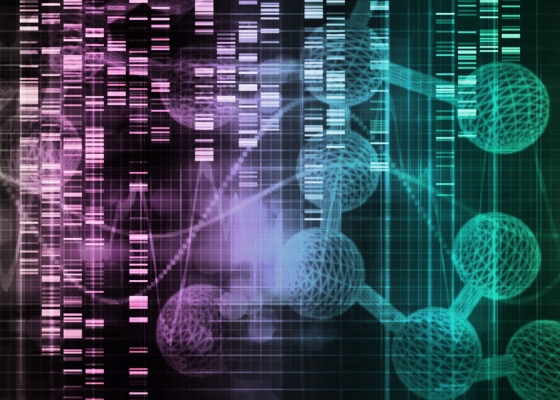Cancer causing mutations arising from exposures to environmental carcinogens