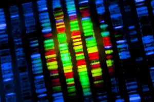 Genomic studies will play an important role in precision medicine for metastatic breast cancer.