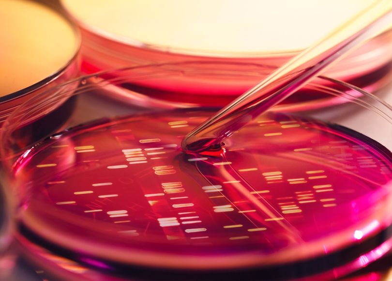 Researchers are using genomic studies to develop better treatments for metastatic breast cancer.