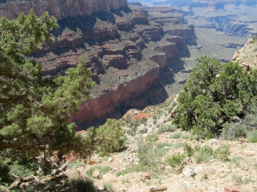 View from hike at the Grand Canyon.